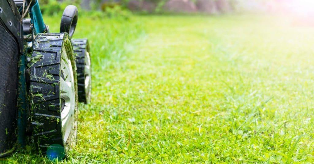 Mowing Wet Lawn